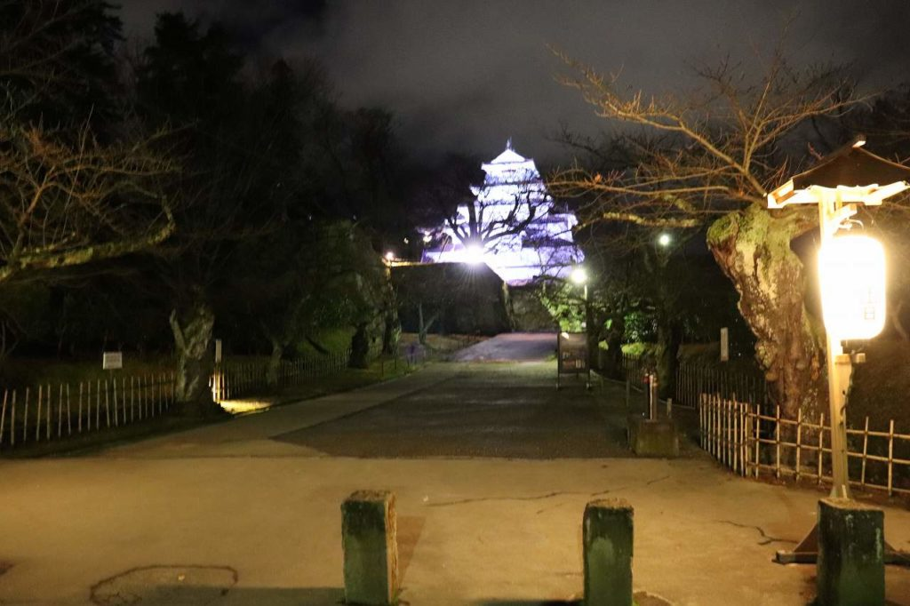夜の会津若松城