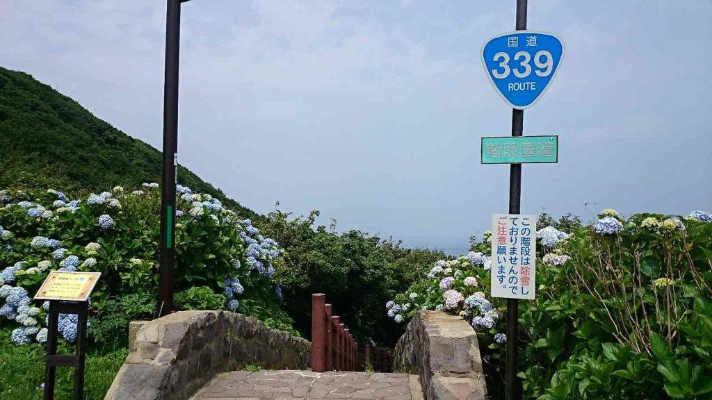 国道339号線